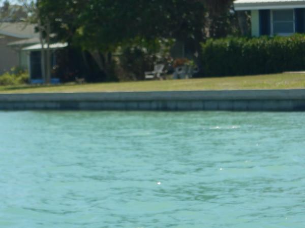 04/05/18 Barrier Islands 200
