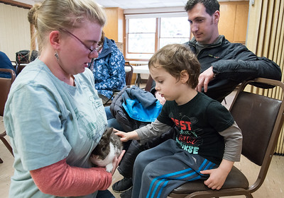 04/11/18  Wesley Bunnell | Staff  Animal care staffer and educator Meaghan Jameson holds Kiwi the rabbit for Noah Gelber, age 3, to touch during an animal class at the New Britain Youth Museum at Hungerford Park on Wednesday afternoon. .