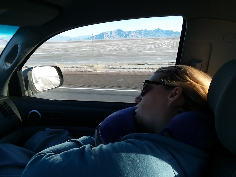 I caught a shot of Mer sleeping again... wake up, you're missing the scenery!