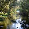 Surveying the Carmel River