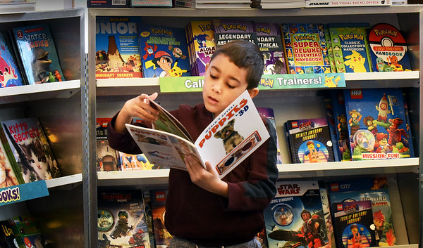 """BRYAN EATON/Staff Photo. Markus Cartagena, 6, checks out the book """"The World's Cutest Puppies in 3-D"""" in the library at the Bresnahan School during a preview session. The school is holding a Book Fair starting today until Saturday morning."""
