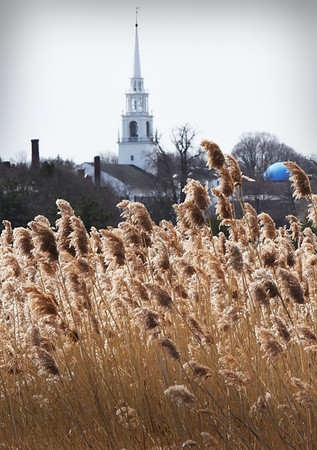 BRYAN EATON/Staff Photo. The Unitarian Church in Newburyport rises above a stand of phragmites near Ring's Island in Salisbury.