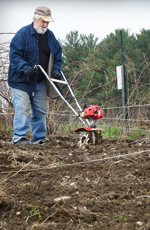 "BRYAN EATON/Staff Photo. Robert Morrill of Amesbury turns the soil with a rototiller at his plot at Amesbury Community Garden at Battis Farm in Amesbury on Monday afternoon. He's had a plot there since the garden started about 20 years ago and grows ""everything"" from seed, including beets, tomatoes and carrots."