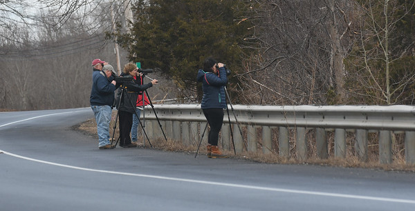 JIM VAIKNORAS/Staff photo Birders train their scopes and binoculars from a bend in Scotland Road in Newbury Sunday morning.