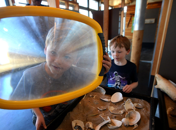 JIM VAIKNORAS/Staff photo Xavier Fitzgerald, 6, of Peabody and his twin brother Wyatt, examine the shells at the headquarters of the Parker River National Wildlife Refuge in Newbury Saturday afternoon.