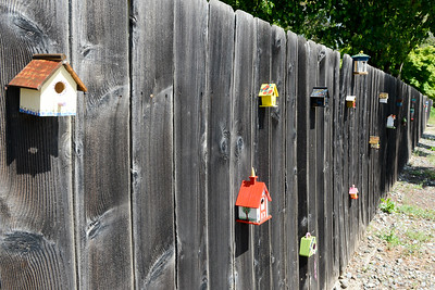 Handmade birdhouses line a fence Tuesday on West Sacramento Avenue in Chico. (Matt Bates -- Enterprise-Record)
