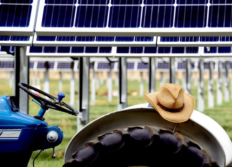 JackÕs Solar Garden