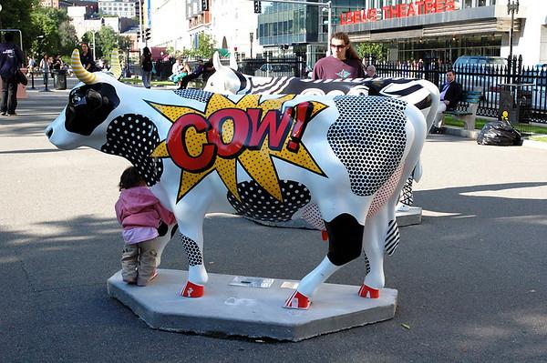 6/15/06 Boston Cows