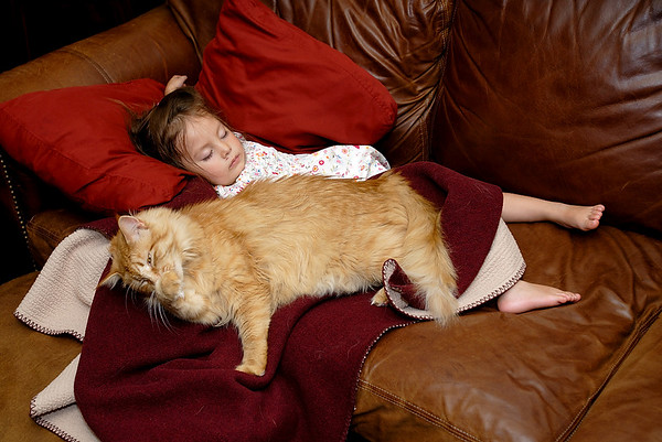 6/10/07 Madeline and Nala sleeping on the couch
