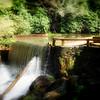 Rakes Mill Pond, Blue Ridge Parkway in Floyd County, VA