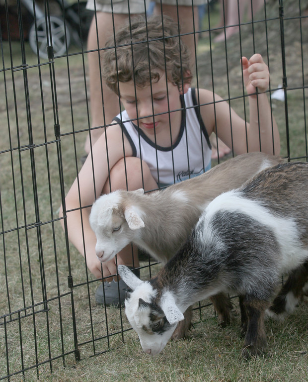 . Nolan Rice checks out a few of the animals in the petting zoo.