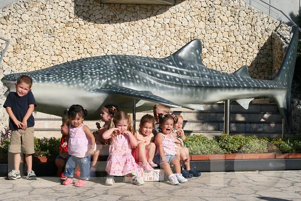 Aquarium2007-09-03_16 53 57