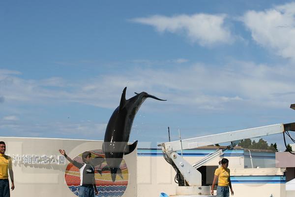 Aquarium2007-09-03_14 46 18