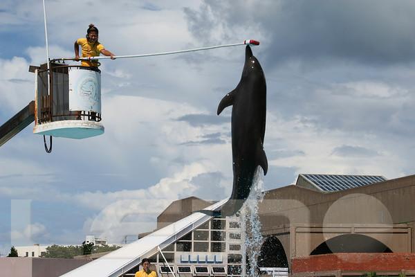Aquarium2007-09-03_14 44 40