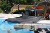 Aquarium2007-09-03_14 41 39