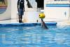 Aquarium2007-09-03_14 42 21