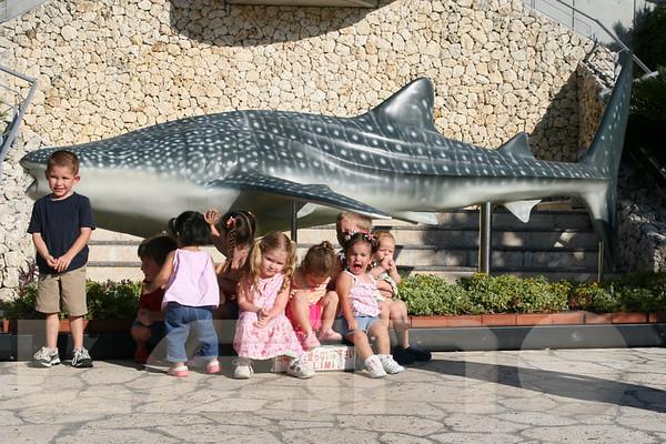 Aquarium2007-09-03_16 53 54