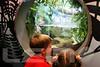 Aquarium2007-09-03_15 44 32