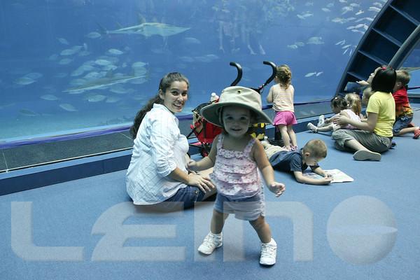 Aquarium2007-09-03_16 17 23