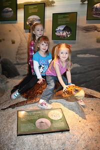 20110225 Shedd Aquarium 957