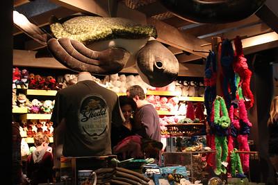 20110225 Shedd Aquarium 967