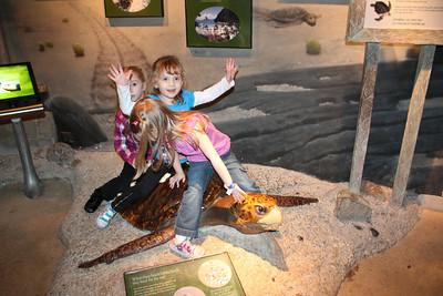 20110225 Shedd Aquarium 959