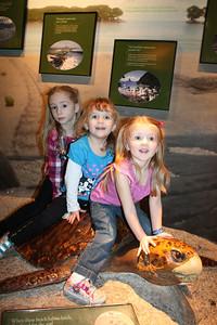 20110225 Shedd Aquarium 958
