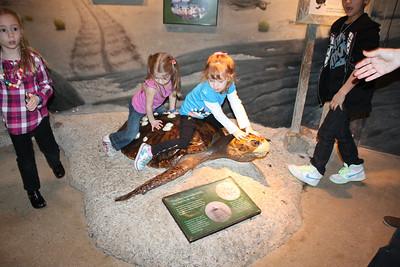 20110225 Shedd Aquarium 963