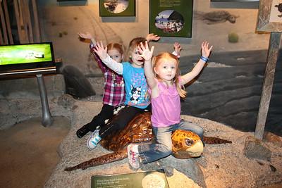 20110225 Shedd Aquarium 961