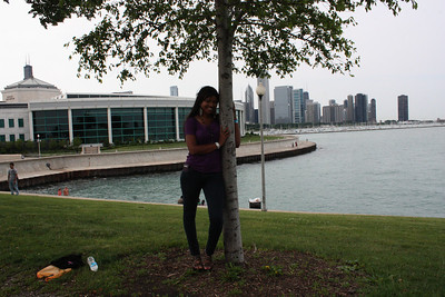 Shedd Aquarium-Chicago 417