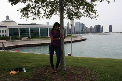 Shedd Aquarium-Chicago 418