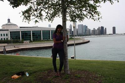 Shedd Aquarium-Chicago 416