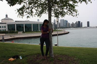Shedd Aquarium-Chicago 415