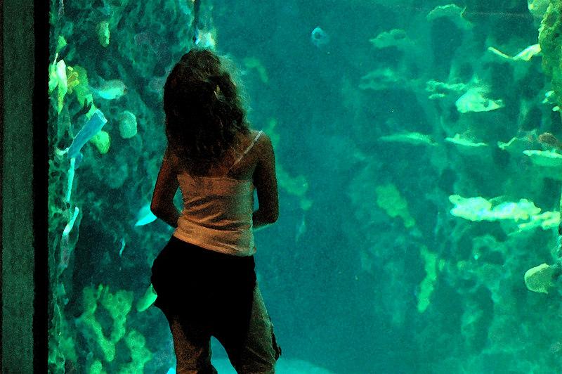 meagan watching the fish