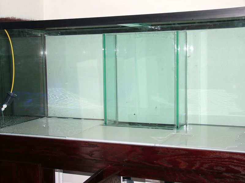 Glass Cages: Starfire, Eurobraced 150 gallon SPS tank. July 2005.