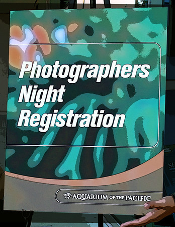 Photographers Night at the Aquarium of the Pacific