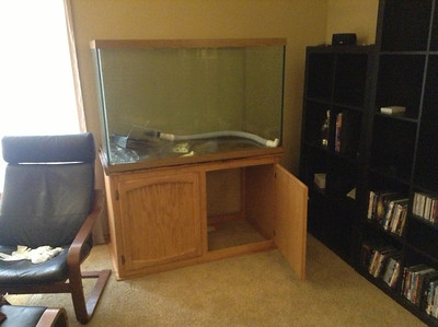 So I decided one day that it was time to have an aquarium again. And I started browsing Craigslist, using some sort of amorphous cost per gallon scheme to narrow down my choices. 130 gallons didn't sound that big, for some reason.  130 gallons is BIG.