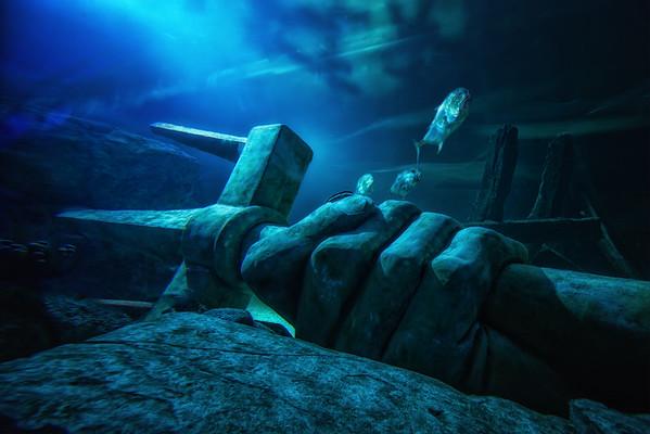 SEA LIFE Minnesota Aquarium in the Mall of America, Mall of America Aquarium