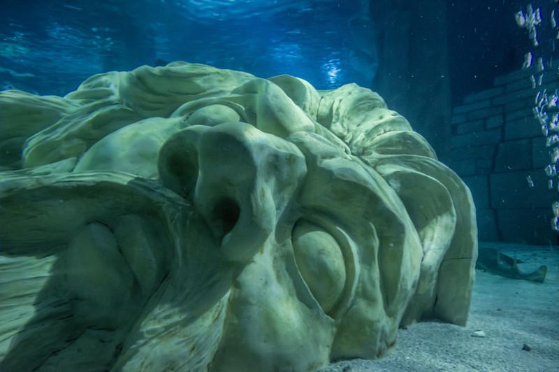 Sea Life Aquarium at Mall of America