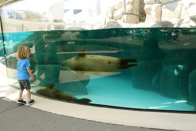 Virginia Aquarium: April 2013