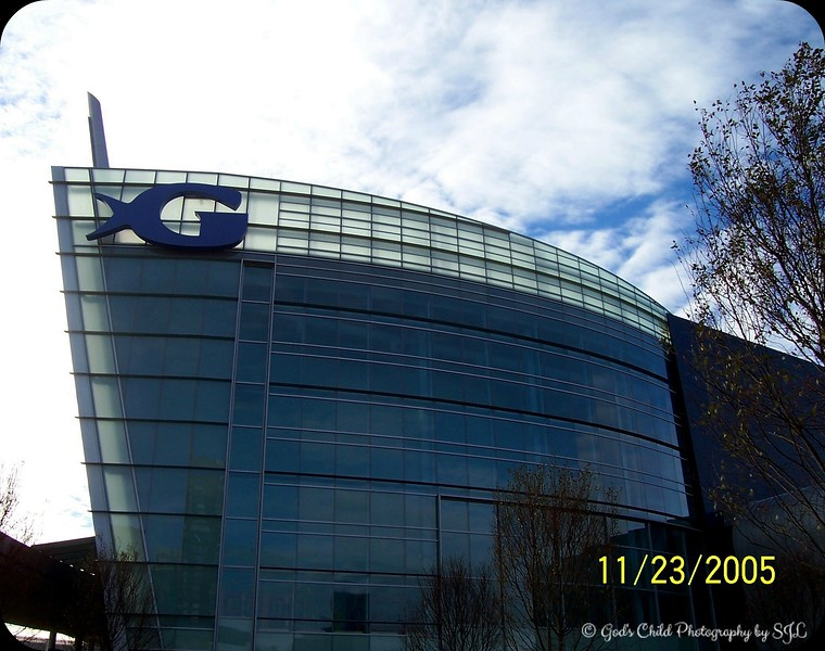 """THE GEORGIA AQUARIUM"" was founded by Bernie Marcus, co-founder of Home Depot. He made a $250 million donation to the city of Atlanta and supposedly created the largest aquarium in the world with over 8 million gallons of water. It opened its doors to the public on November 22, 2005.<br /> <br /> Atlanta, GA"