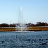The Sunlit Sparkling Fountain