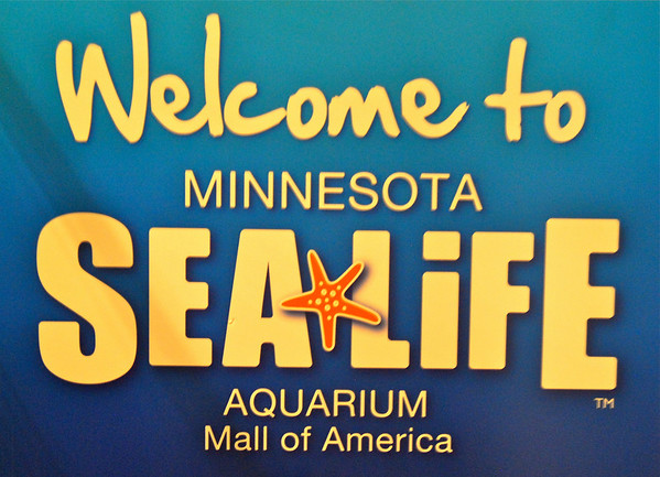 SeaLife Aquarium, July 29, 2012