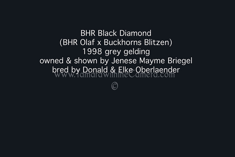 BHR Black Diamond info