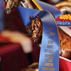 SHN Awards 9565