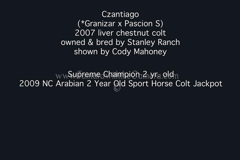 Czantiago results