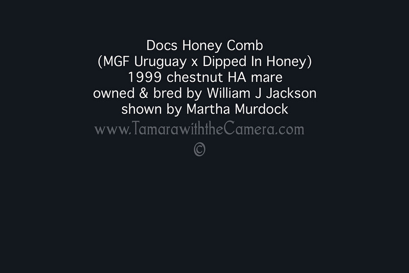 Doca Honey Comb info