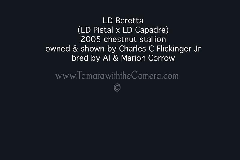 LD Beretta
