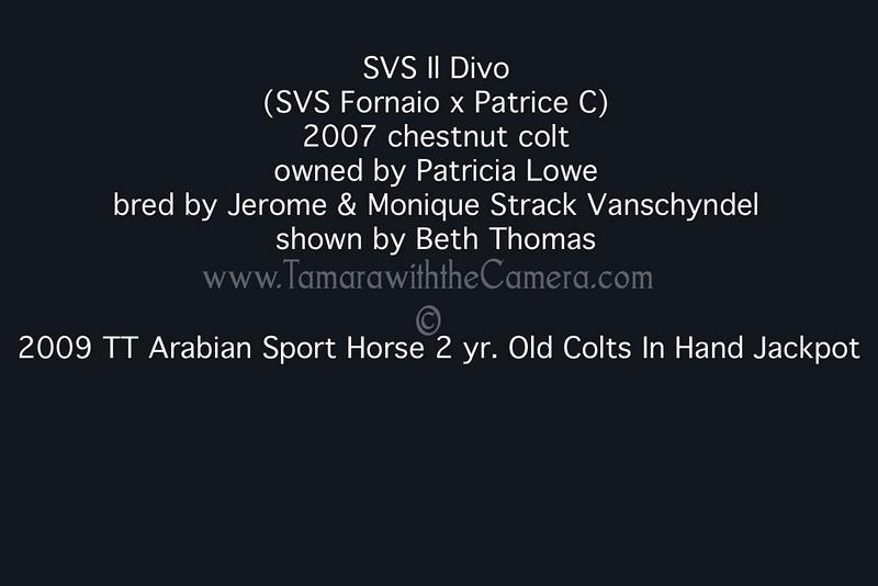SVS Il Divo results