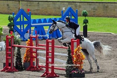 Equestrian NRR_5478 PE
